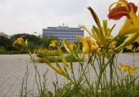 USP recebe prêmio internacional por projetos de sustentabilidade no campus