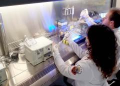 EACH contará com um novo curso de graduação: bacharelado em Biotecnologia