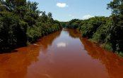 Em entrevista à Rádio USP, professora fala sobre contaminação e morte do Rio Paraopeba após rompimento de barragem