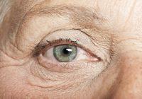 Efeito benéfico do lítio observado em idosos com Alzheimer começa a ser desvendado em pesquisa de professora da EACH