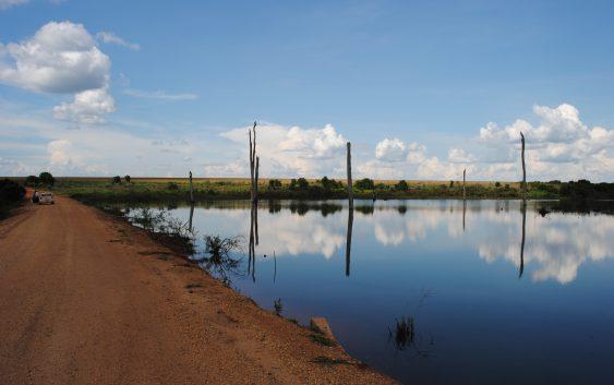 Professor da EACH propõe nova forma de mudança ambiental na Amazônia desmatada